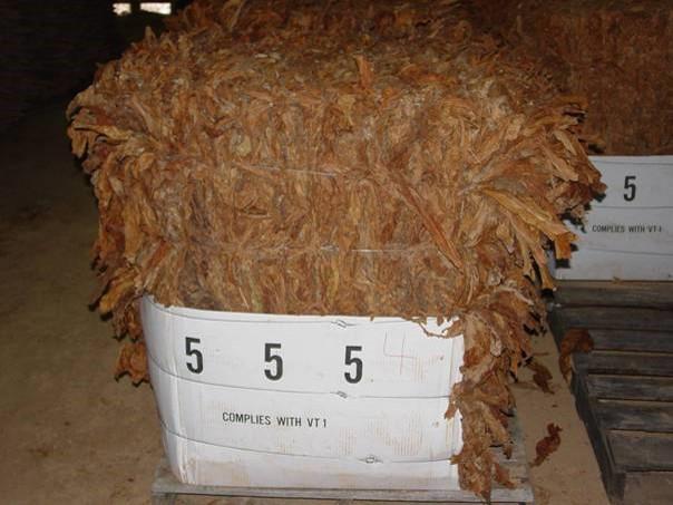 Large Bale Tobacco